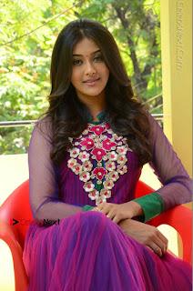 Actress Pooja Jhaveri Latest Stills in Purple Salwar Kameezt at Dwaraka Success Meet  0173.JPG