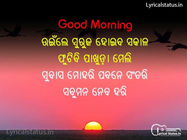 Best Odia Good Morning Shayari Photo