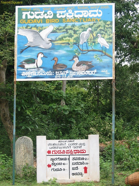 Gudavi Bird Sanctuary, Shimoga