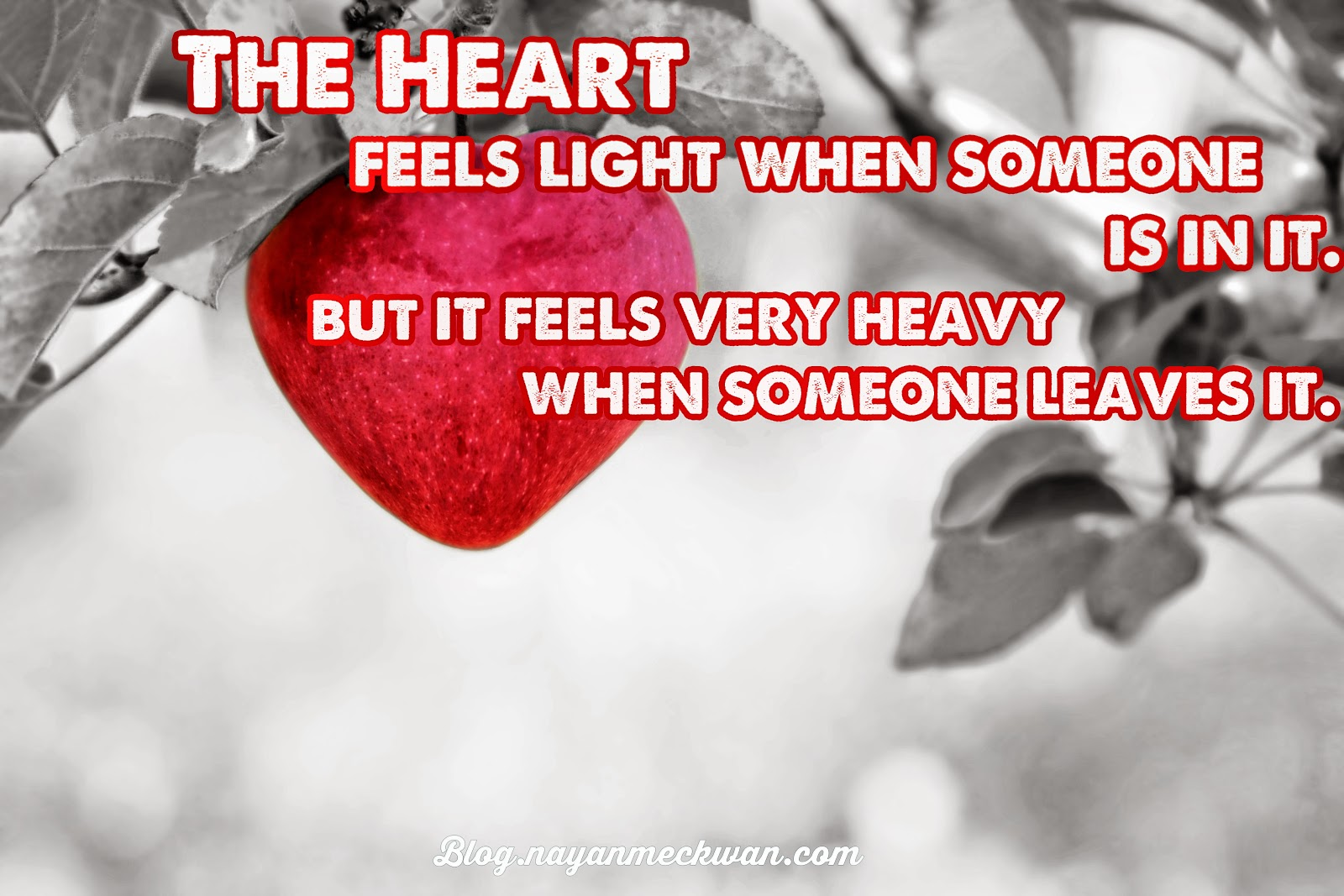 Heart Feels | Heart Melting Quote & Saying