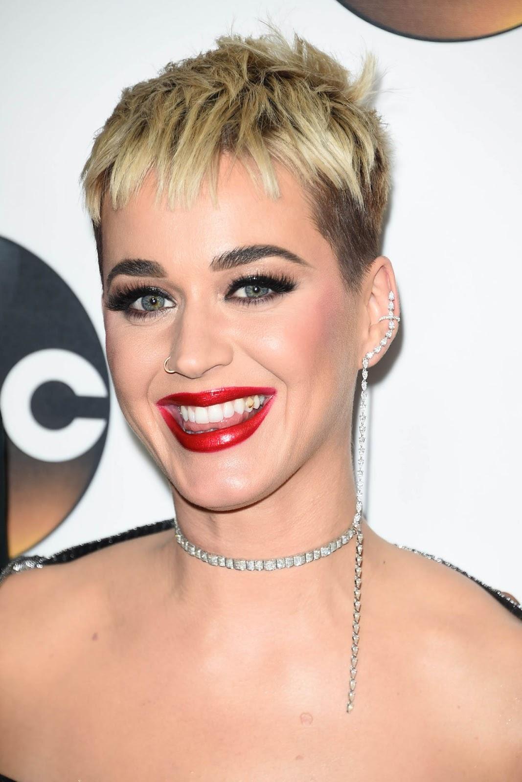 Katy Perry – Disney ABC Television TCA Winter Press Tour