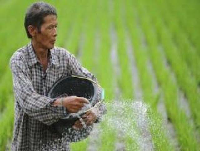 Jiwa Besar Petani Miskin Kisah Inspiratif Gambar