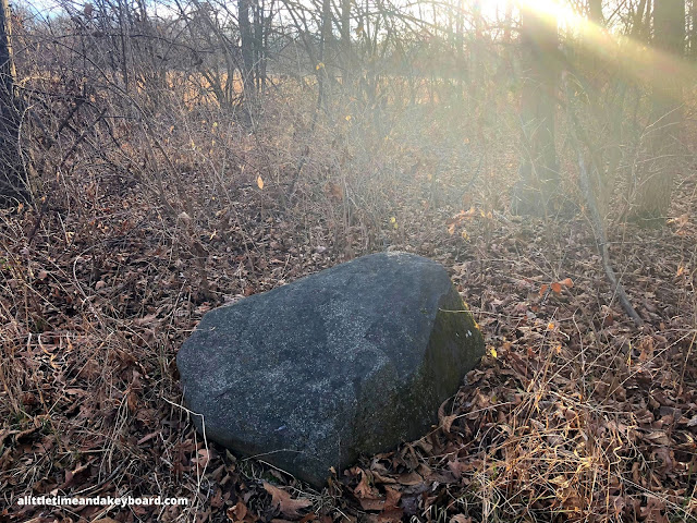 An erratic boulder folded in the landscape by rich brown leaves highlighted by the waning sun at Hickory Grove Highlands in Cary, Illinois