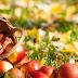 Μεταλλαγμένα τρόφιμα - Ένα ακόμα βίντεο που ξεμπροστιάζει την Νέα Τάξη