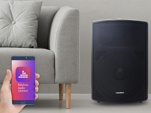 speaker portable polytron
