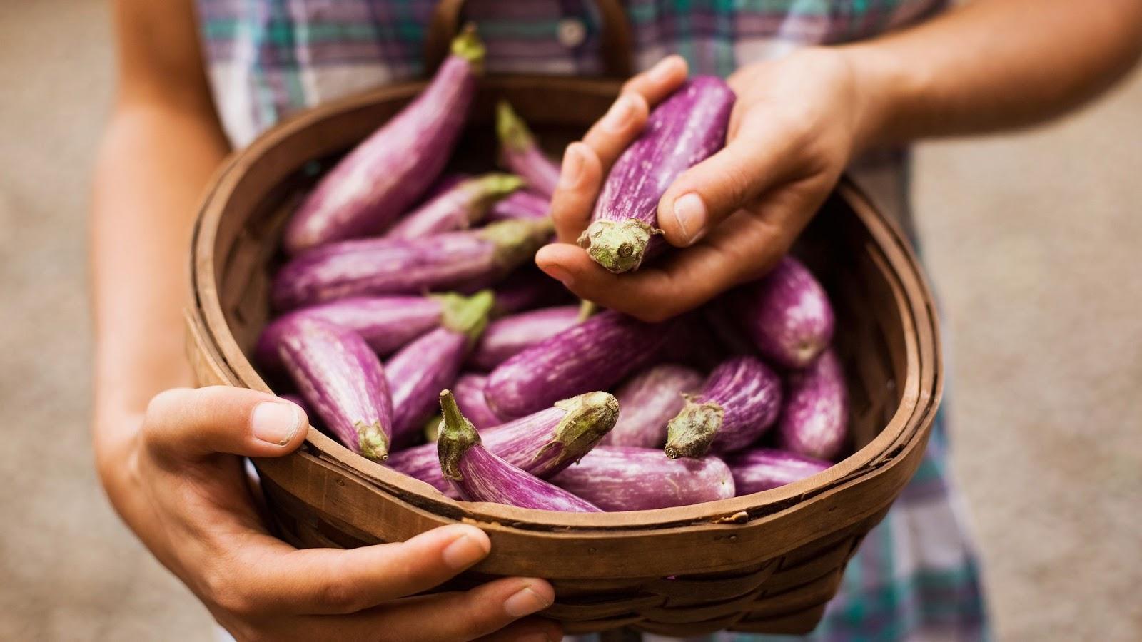 Surprising Health Benefits of Eating Eggplant