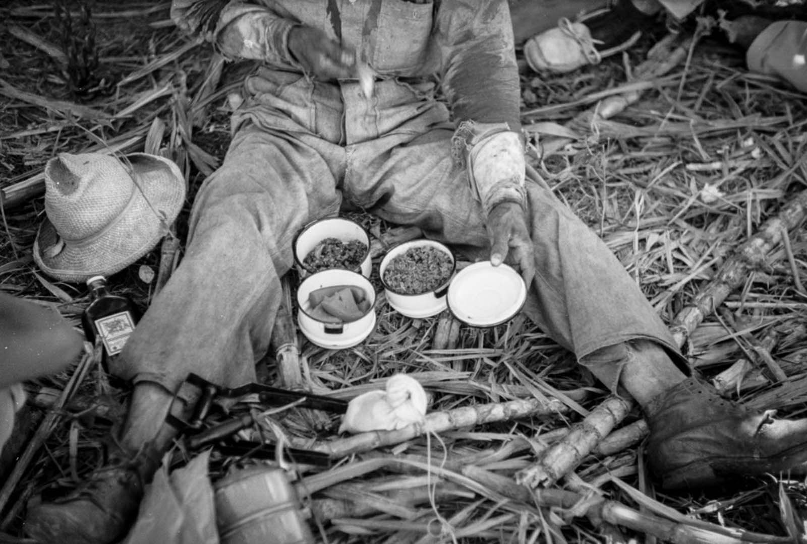 A worker on a sugar plantation pauses for a lunch of rice, beans, and papaya.