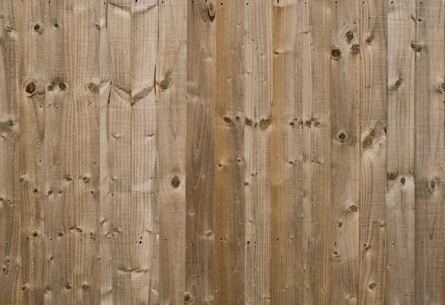 Shiny wooden panels texture