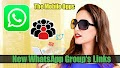 Most Popular New WhatsApp group link 2019 3500+Groups