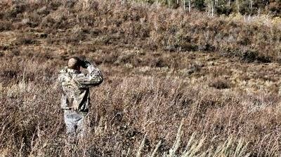 Guarding the Hunt