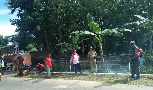 Babinsa Wonosari Tanam Bunga Refugia Sepanjang Jalan Desa