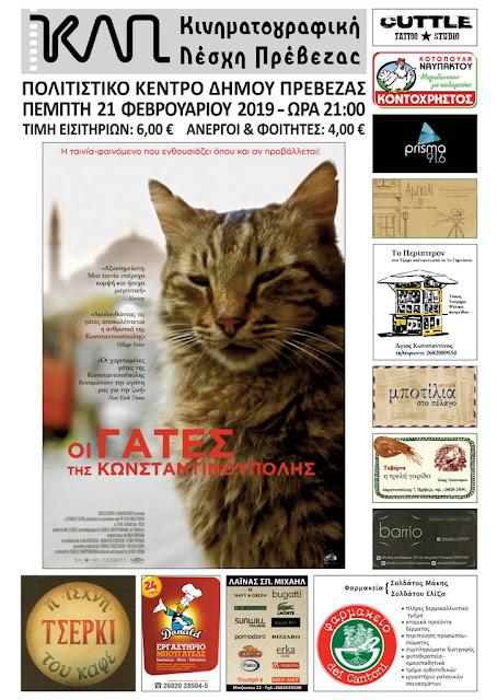 """Αποτέλεσμα εικόνας για Η Κινηματογραφική Λέσχη Πρέβεζας παρουσιάζει την ταινία """"Οι γάτες της Κωνσταντινούπολης"""""""