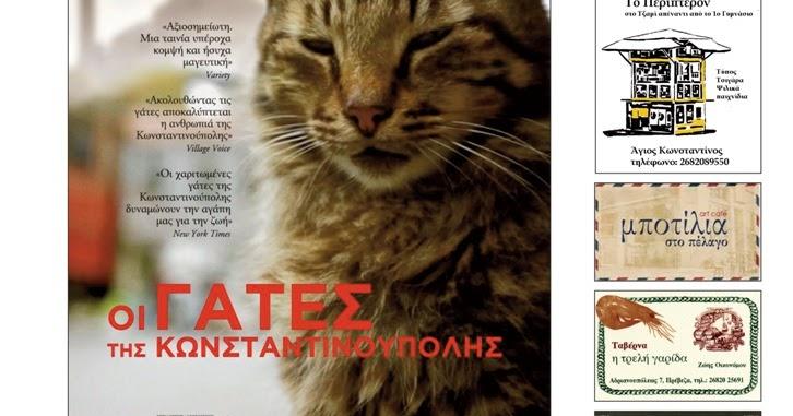 """Πρέβεζα: Η Κινηματογραφική Λέσχη Πρέβεζας παρουσιάζει την ταινία """"Οι γάτες της Κωνσταντινούπολης"""""""