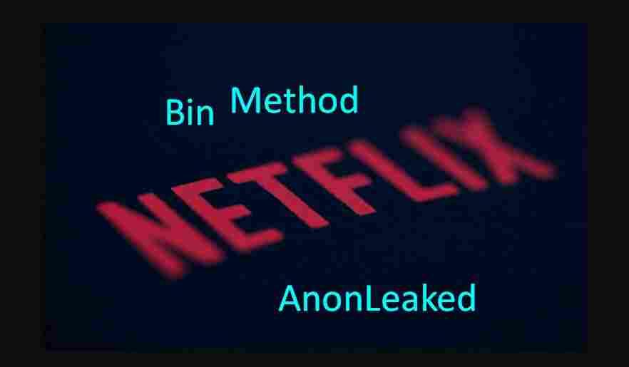 Netflix Bin Method 2019