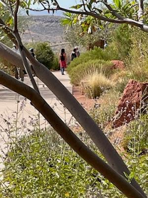 Vistors to Red Hills Desert Garden