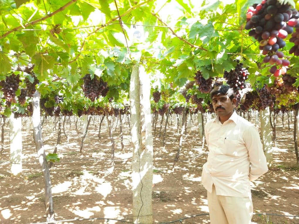 Sachin Progressive Farmer of Karnataka