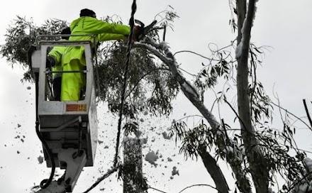 Απολογισμός «Μήδειας»: Στο σκοτάδι 100.000 νοικοκυριά, έπεσαν 1.500 δέντρα στην Αττική