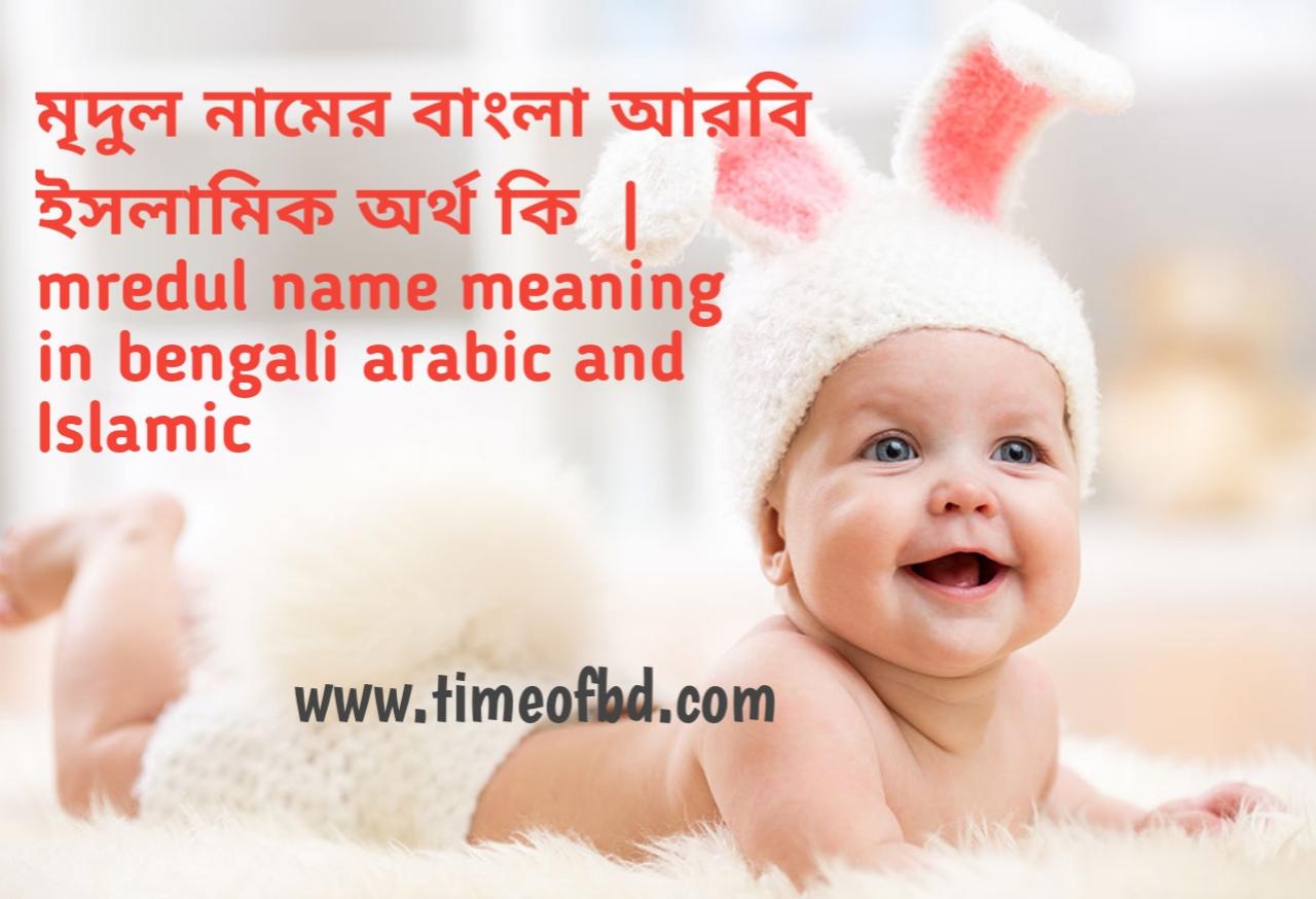 মৃদুল নামের অর্থ কী, মৃদুল নামের বাংলা অর্থ কি, মৃদুল নামের ইসলামিক অর্থ কি, mredul name meaning in bengali