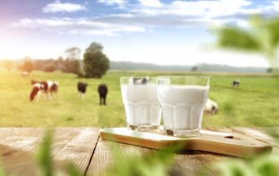 حليب الحمير,حليب الحمار,لبن الحمير,حليب,فوائد حليب الحمير,الحمير,حليب الحمير اثر,حليب الحمير قطر,حليب الحمير حلال,حليب الحمير فوائد,حليب الحمير للبشرة,هل حليب الحمير حلال,منتجات حليب الحمير,حليب الحمير وفوائده,جربت حليب الحمار,الحليب,فوائد حليب الحمار,حليب الحمار للوجه,حليب الحمار للبشره,حليب الحمار فوائده,صابونة حليب الحمار,فوائد حليب الحمارة,سعر لبن الحمير,نور ستارز و حليب الحمار,هل يجوز شرب حليب الحمار,ثمن الحليب,فوائد لبن الحمير,نجم خليجي يشجع على شراء وشرب حليب الحمير,فوائد شرب الحليب حليب الحمير,حليب الحمير فوائد,فوائد حليب الحمير,حليب الحمار,لبن الحمير,فوائد حليب الحمار,حليب الحمير وفوائده,فوائد لبن الحمير,حليب الحمير للبشرة,حليب الحمير فوائده,ما فوائد حليب الحمير,فوائد حليب الحمير للبشرة,حليب الحمار فوائده,حليب,فوائد حليب الحمارة,فوائد الحليب,حليب الحمير وفوائده للبشرة,فوائد شرب الحليب,الحمير,لبن الحمير فوائد,حليب الحمير اقرب لحليب الام,حليب الحمير اثر,حليب الحمير قطر,حليب الحمير حلال,حليب الحمير شرعا,علاج حليب الحمير,جبنة حليب الحمير,مشروع حليب الحمير