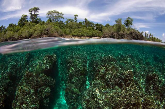 Pulau Samada Besar - Wisata PULAU TALIABU (Provinsi Maluku Utara)