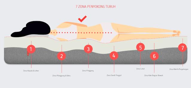 7 Zona Penyangga Tubuh
