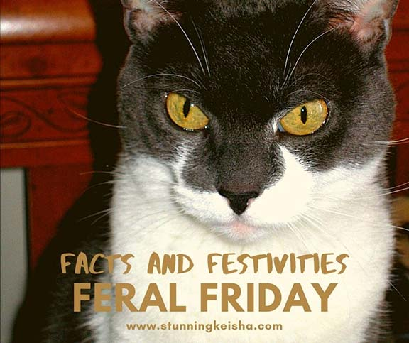 Feral Friday Facts and Festivities