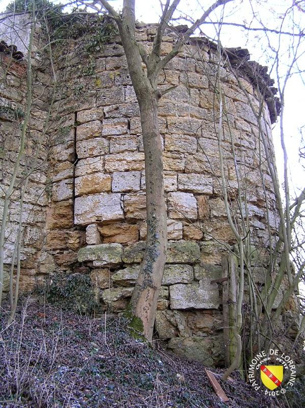 MOUSSON (54) - Le village fortifié et le château