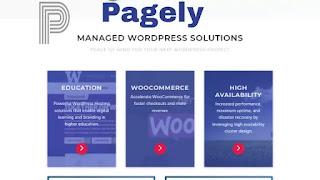Pagely managed WordPress hosting, managed WordPress hosting, web hosting
