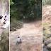 Grupong Nagpi-picnic sa Isang Waterfalls sa Cebu, Binulaga ng Rumaragasang Tubig!