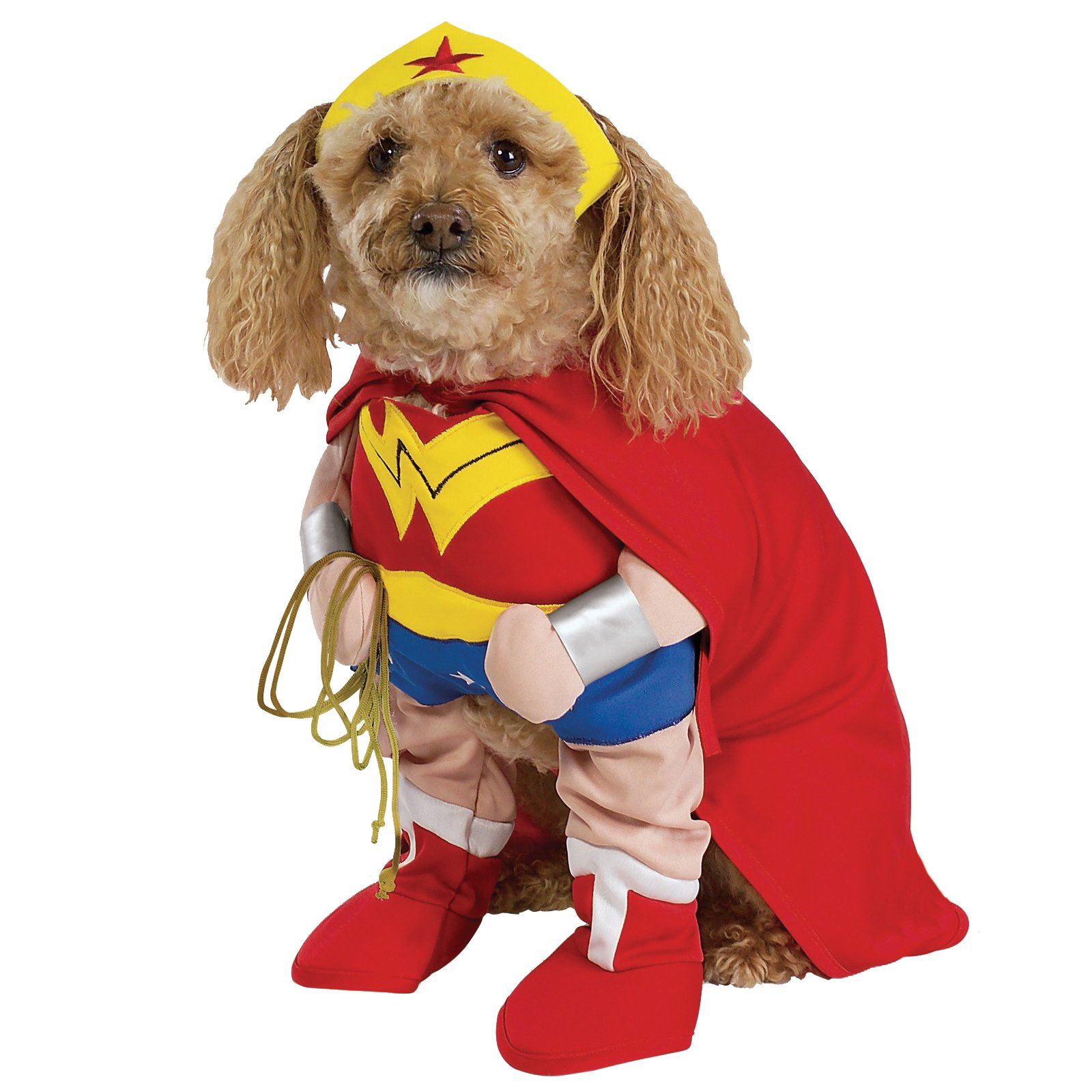 Funny Animals In Superhero Costumes