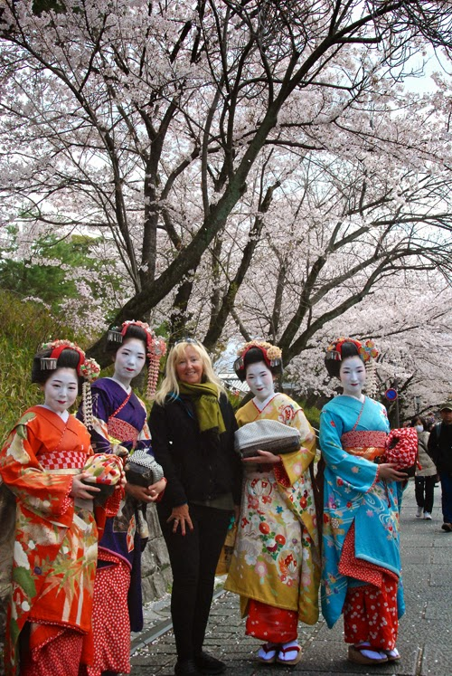 Pat Dunlap Thinks She is a Geisa during  Cherry Blossom Season kyoto japan