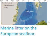 https://sciencythoughts.blogspot.com/2014/05/marine-litter-on-european-seafloor.html