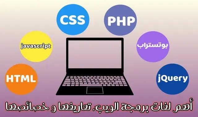 language programmer web developer
