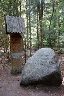 """Wejście do rezerwatu """"Bukowa Góra"""" na ścieżce zielonej"""