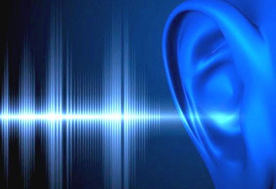 ¿Cómo se produce el sonido?