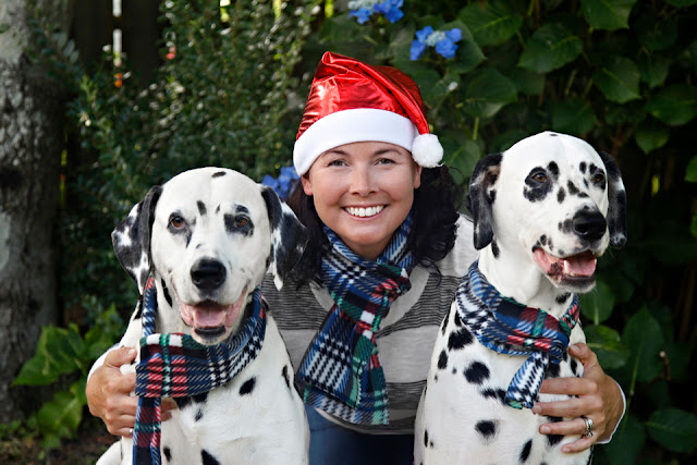 Christmas photo of Dalmatian dogs and their owner all wearing matching scarves