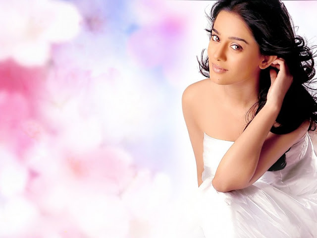 Amrita Rao Images, Hot Photos & HD Wallpapers