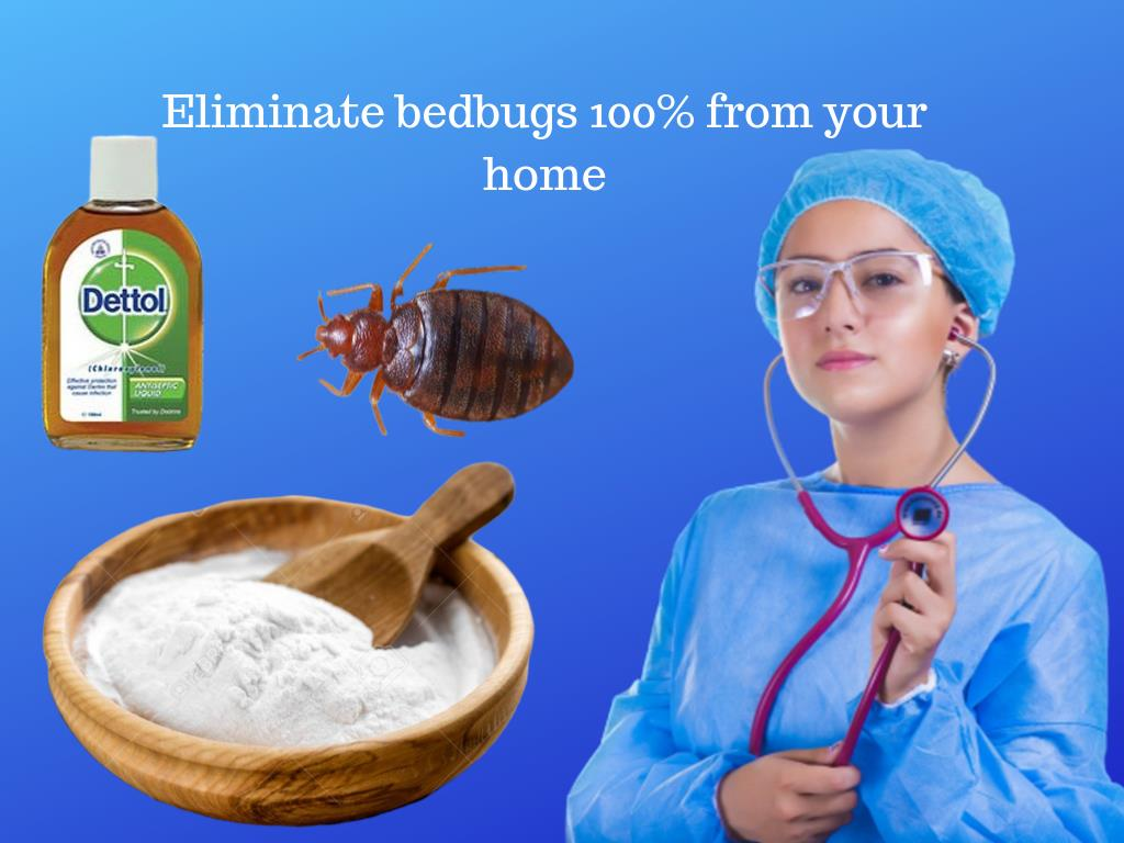 Home Remedies That Will Eliminate Bed Bugs 100 From Your Home