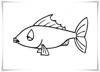 ausmalbilder zum ausdrucken: ausmalbilder fische
