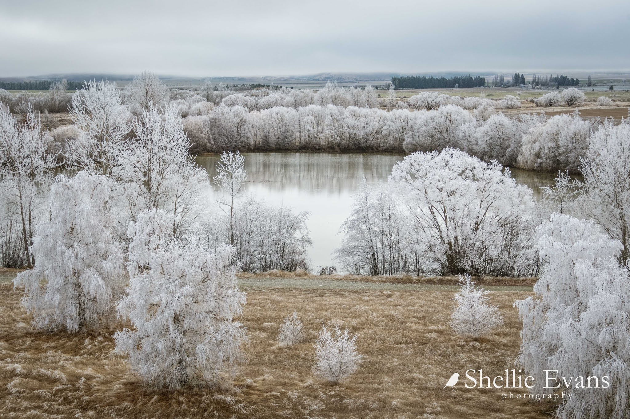 Two Go Tiki Touring: Winter in the Mackenzie- A Hoar Frost ...