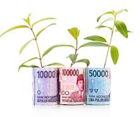 Pengertian Saving Bond Ritel, Karakteristik, Istilah, dan Keuntungannya
