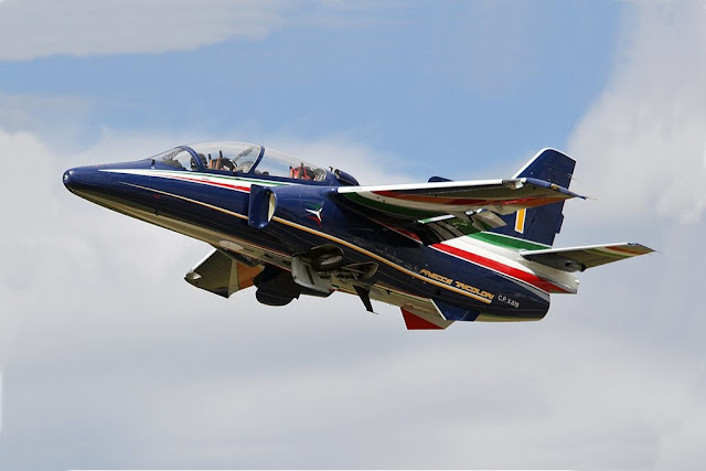 Frecce Tricolori Commander talks about the new M345 trainer jet