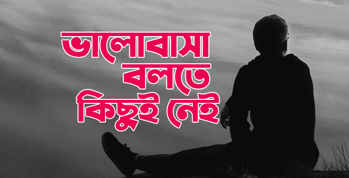 ভালোবাসা বলতে কিছুই নেই | Bangla Sad Story