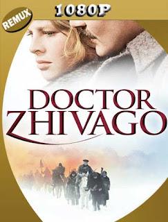 Doctor Zhivago (1965) REMUX [1080p] Latino [GoogleDrive] SilvestreHD