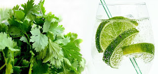 प्राकृतिक एन्टीआक्सीडेंट का जादुई असर , Natural Antioxidants in Hindi, एंटीऑक्सीडेंट युक्त आहार, Rich Antioxidants, प्राकृतिक एन्टीआक्सीडेंट, These Antioxidants Protect Against Diseases, antioxidant kya hai