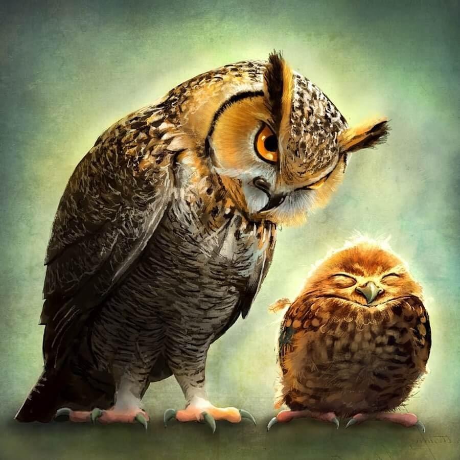 08-Little-owl-sleeping-Jeremy-Norton-www-designstack-co