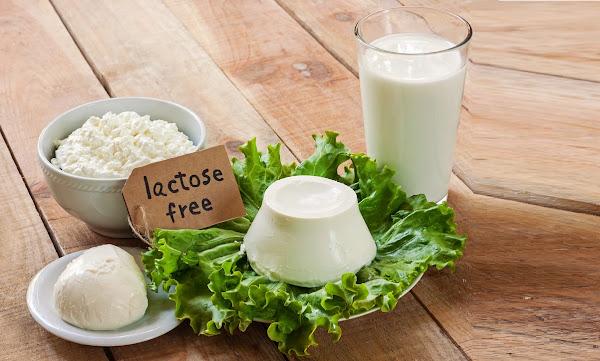 اللاكتوز Lactose