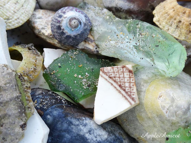 beachcombing pottery sea glass and shells by AppleApricot Wen