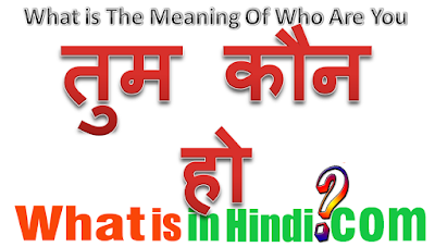 What is the meaning of Who are you in Hindi