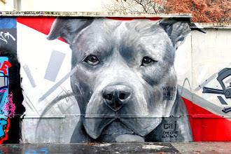 Sunday Street Art : EAJ 2323 - rue Henri Noguères - Paris 19